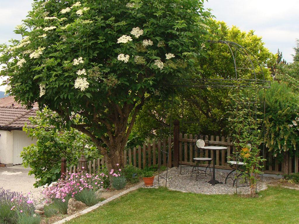 Privatgarten m swangen jurt garten for Gartengestaltung rosenbogen